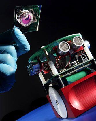 Roboter: Reproduzierbare Reaktionen des künstlichen Gehirns