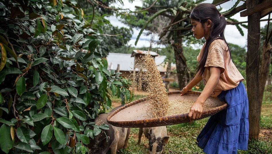 Mädchen bei der Hausarbeit in Kambodscha