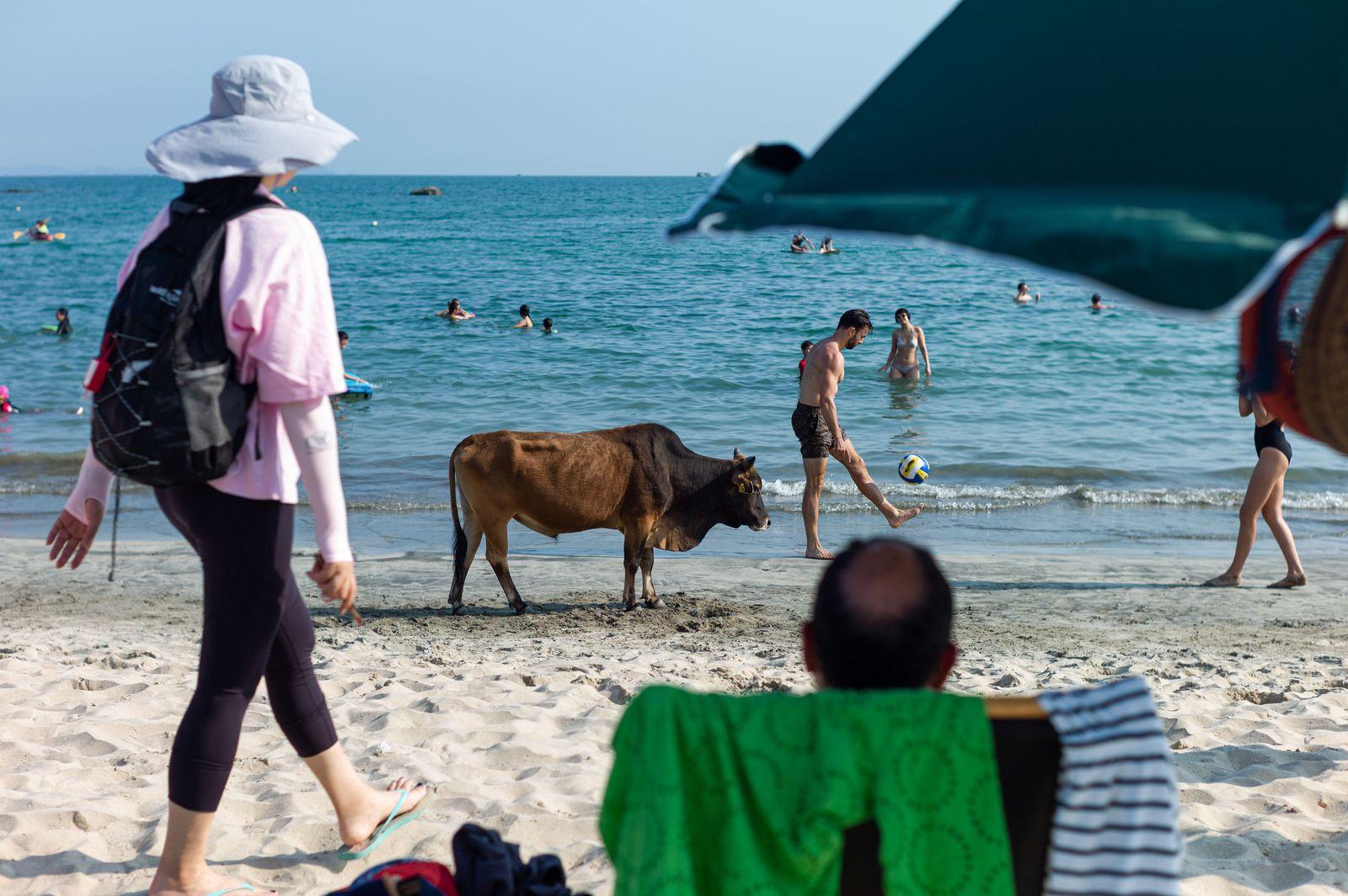 People at the beach in Hong Kong, China - 02 May 2020