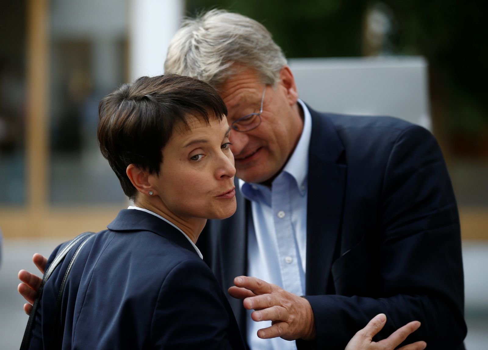 Meuthen, Petry