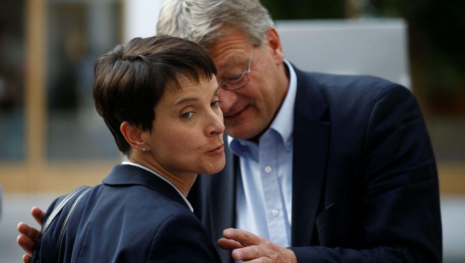 Frauke Petry, Jörg Meuthen (Archivbild von April 2017)