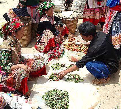 Markt von Ba Ca: Handelsknoten für die Blumen-Hmong