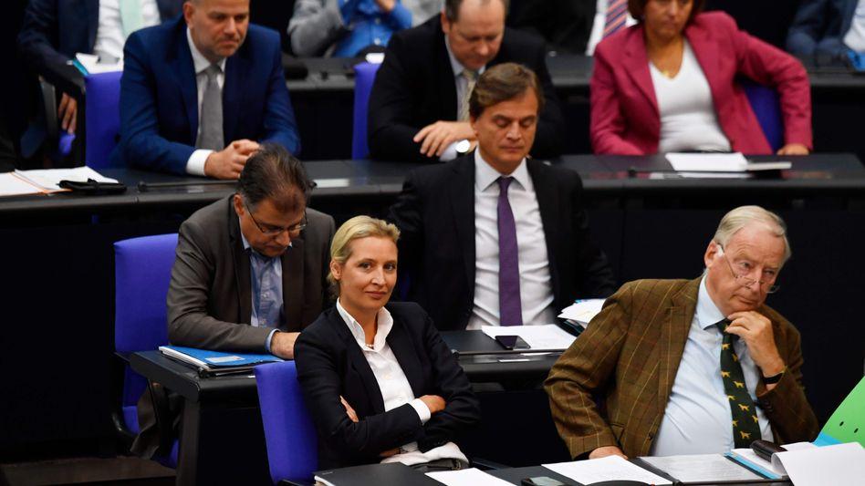 AfD-Fraktionsvorsitzende Weidel und Gauland: Im September 2017 mit 86 Prozent gewählt.