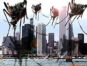 Killer-Moskitos in New York