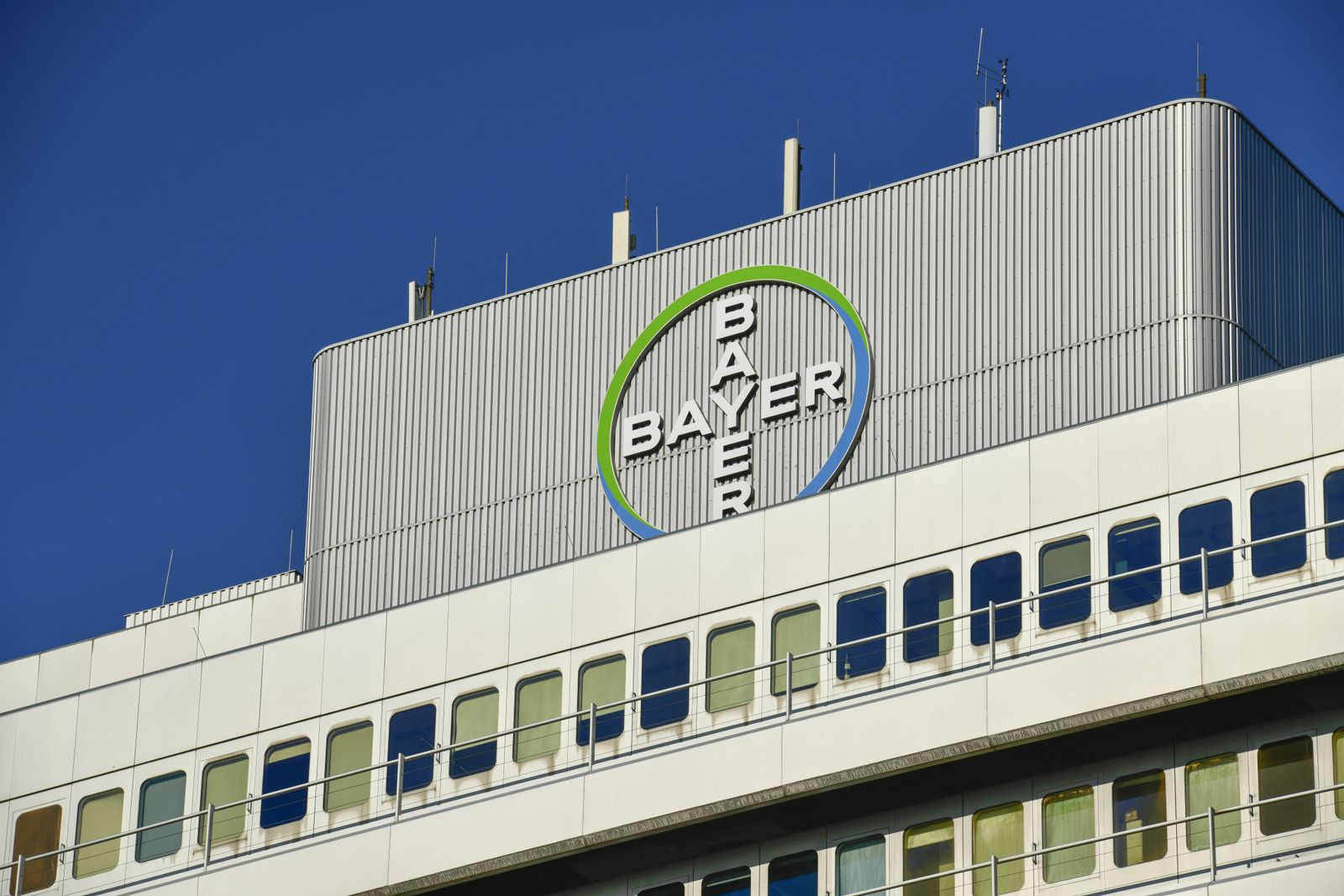 EINMALIGE VERWENDUNG Bayer / Pille