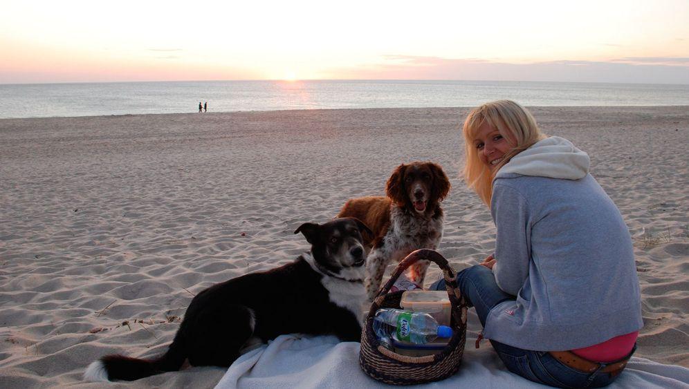 Luxusurlaub mit Tier: Mit Herrchen am Strand von Sylt