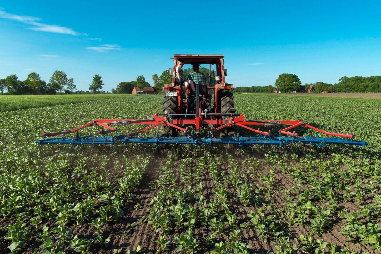 Biobauer bearbeitet seine Felder, Deutschland, Niedersachsen, Bakum organic farmer tilling a field, Germany, Lower Saxon