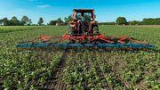 Jeder zehnte Landwirt wirtschaftet ökologisch