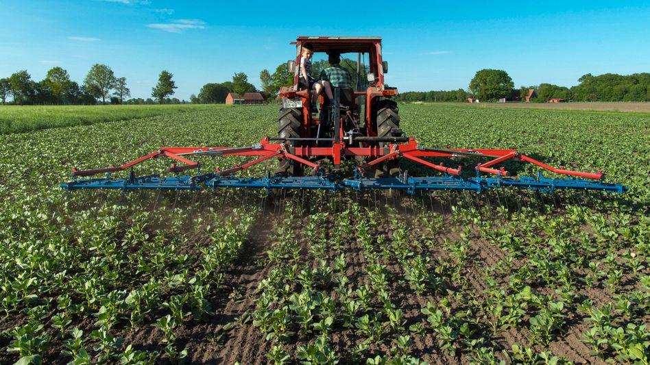 Biobauer in Niedersachsen bei der Feldarbeit