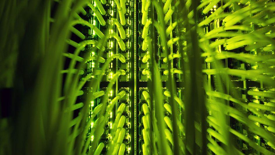 Glasfaserkabel in einem Rechenzentrum