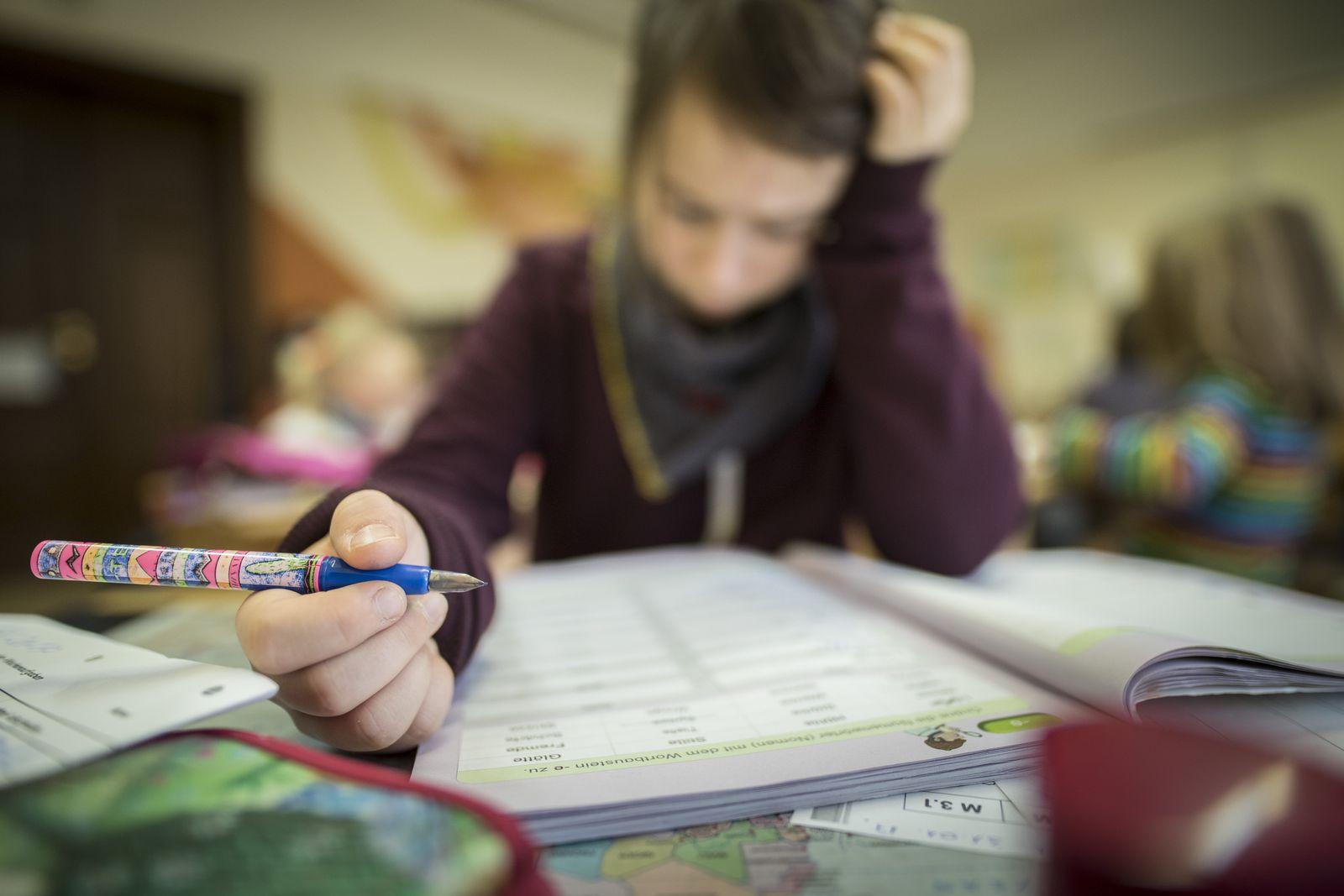 EINMALIGE VERWENDUNG Pisa-Studie/ Schwerpunkt lesen