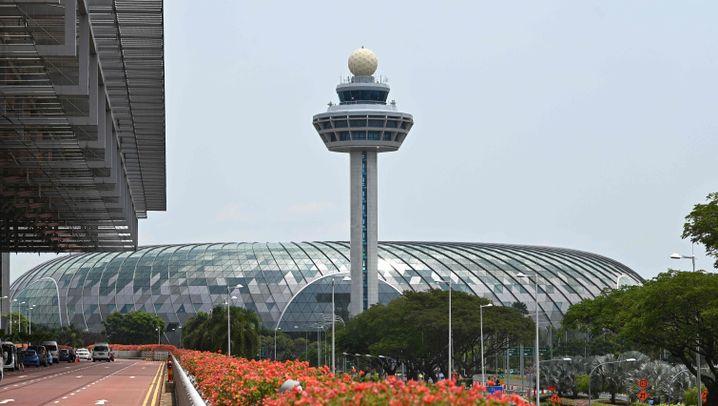 Wasserfall und Glasbrücke: Donut auf dem Singapurer Flughafen