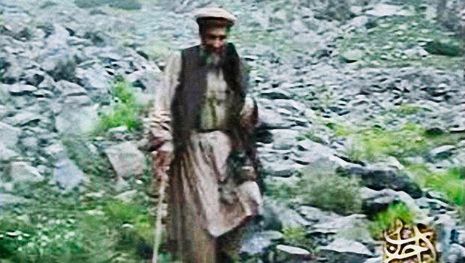 Terrorpate Osama Bin Laden: Finanzspritzen wohlhabender Gönner