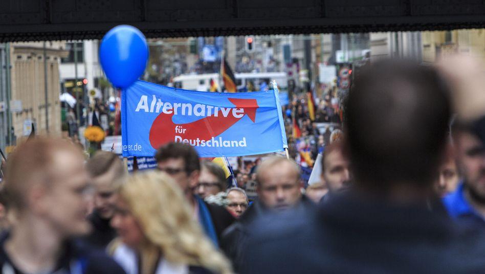 AfD-Demo in Berlin: Aufschwung für die Rechtspopulisten