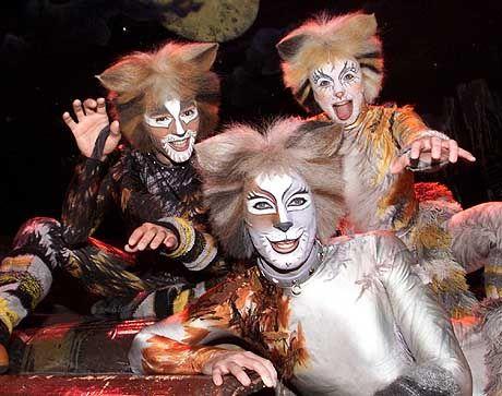 """Stella-Erfolgsmusical """"Cats"""": Vor zwei Jahren kam das Aus"""
