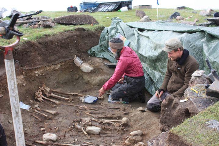 Suche nach Knochen in Grönland (Igaliku-Fjord, 2010): Warum verschwanden Wikinger?