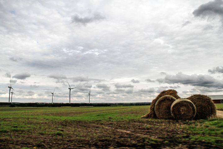 Windräder in Jütland: Großprojekte liefen hier lange geräuschloser als in Deutschland