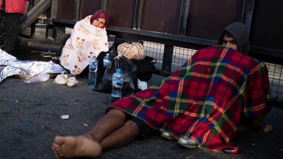 Flüchtlinge in Ungarn auf einer Straße an der Grenze zu Serbien
