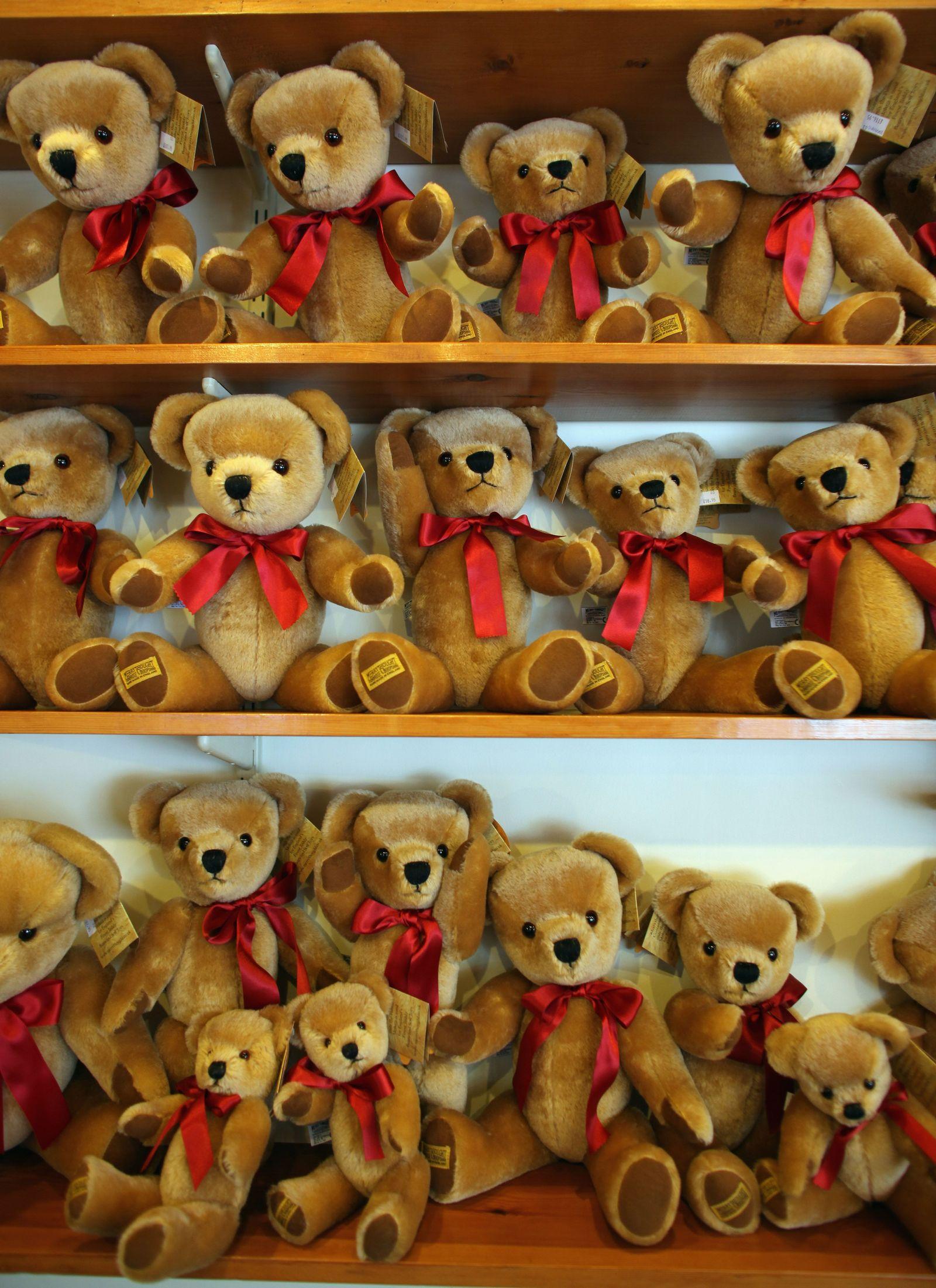 Spielzeug/Teddy