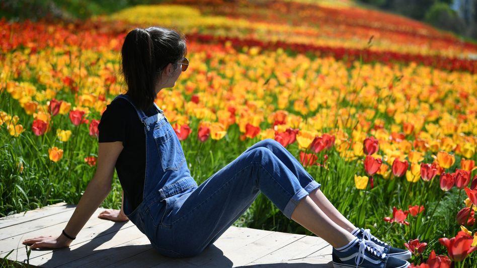 Virag Kiss aus Ungarn sitzt auf der Blumeninsel Mainau vor einem Meer aus mehr als einer Million Tulpen und genießt die sommerlichen Temperaturen.