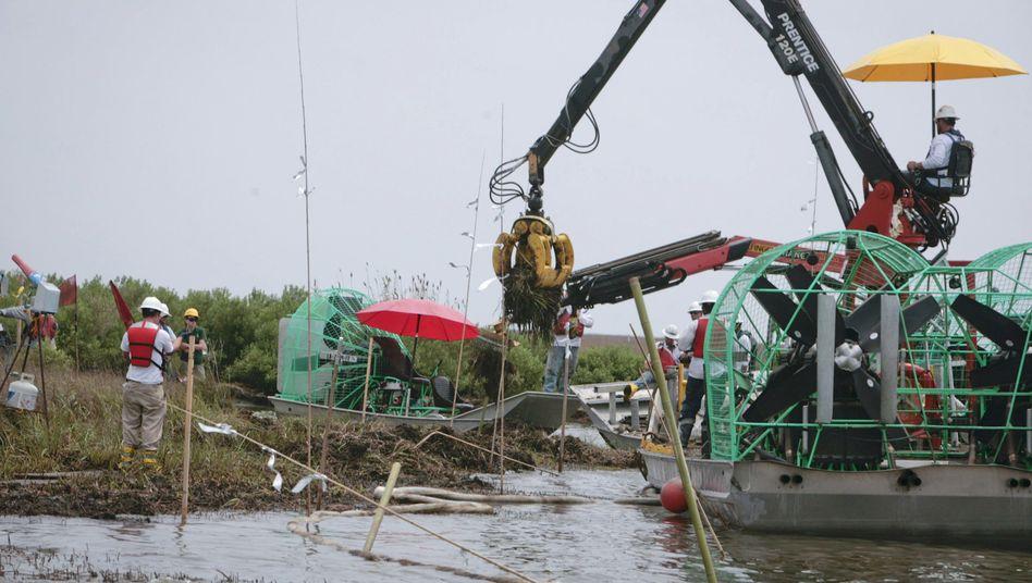 Säuberung in Myrtle Grove, Louisiana: Das Ausmaß der Katastrophe ist noch unabsehbar