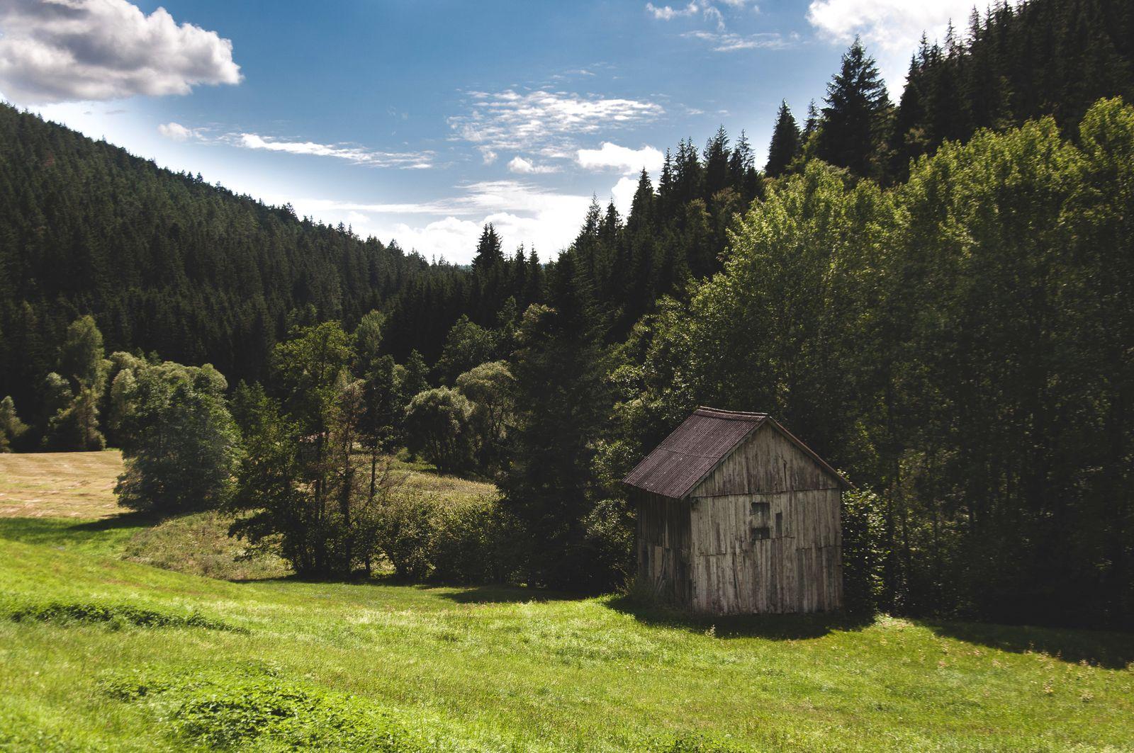 Nordschwarzwald/ Wandertouren