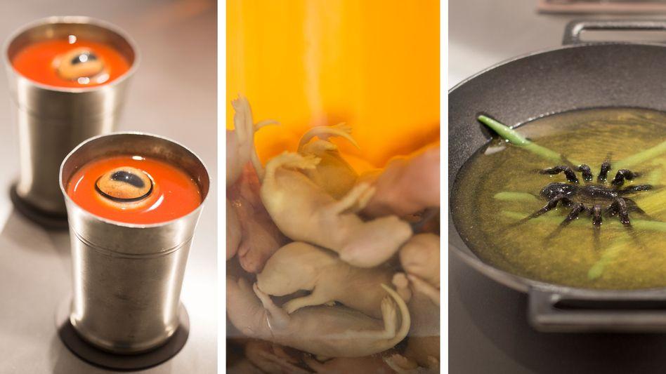 Exponate Schafsauge in Tomatensaft, Mäusewein, gebratene Tarantel: »Teile dein Erlebnis«