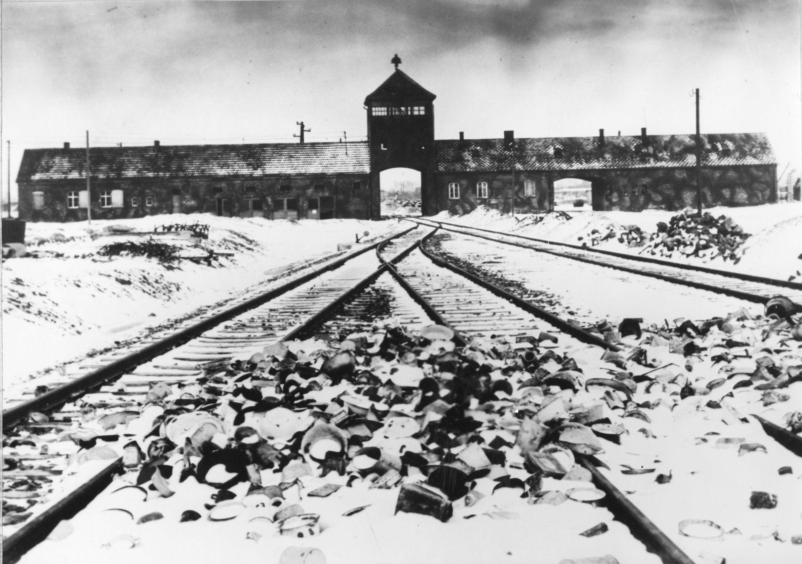 Buch/ Eirikur Örn Norddahl: Böse/ Auschwitz