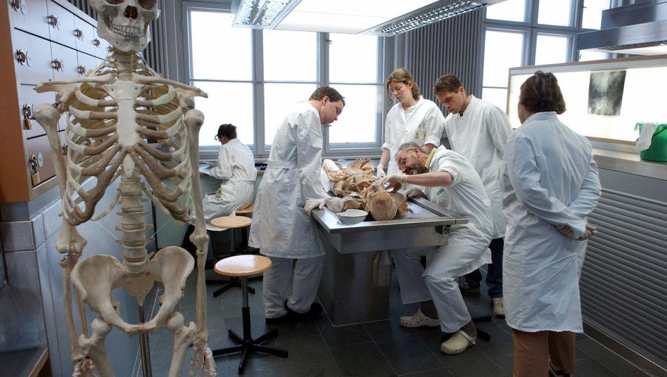 Medizinstudenten beim Sezieren einer Leiche (Symbolbild)