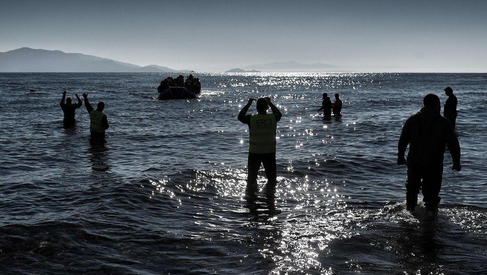 Mitarbeiter von ERCI auf Lesbos (2016)