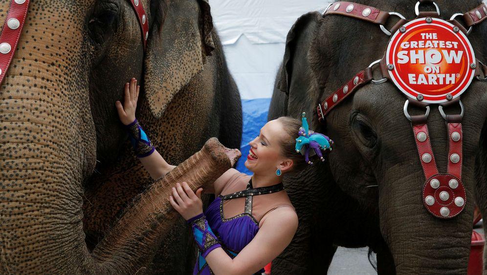 Ringling-Zirkus: Endlich Elefanten-Freiheit