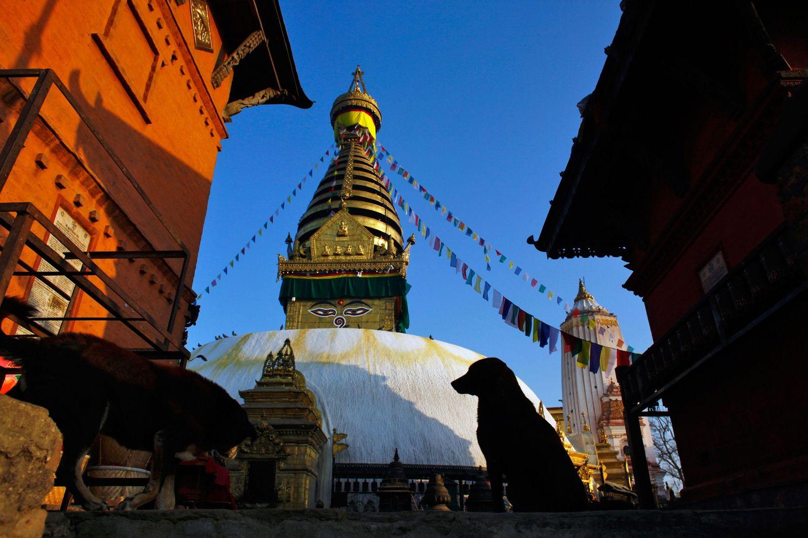 Nepal/ UNESCO/ 0301