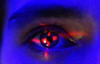 Menschliches Auge: Tausende Schichten bündeln das Licht