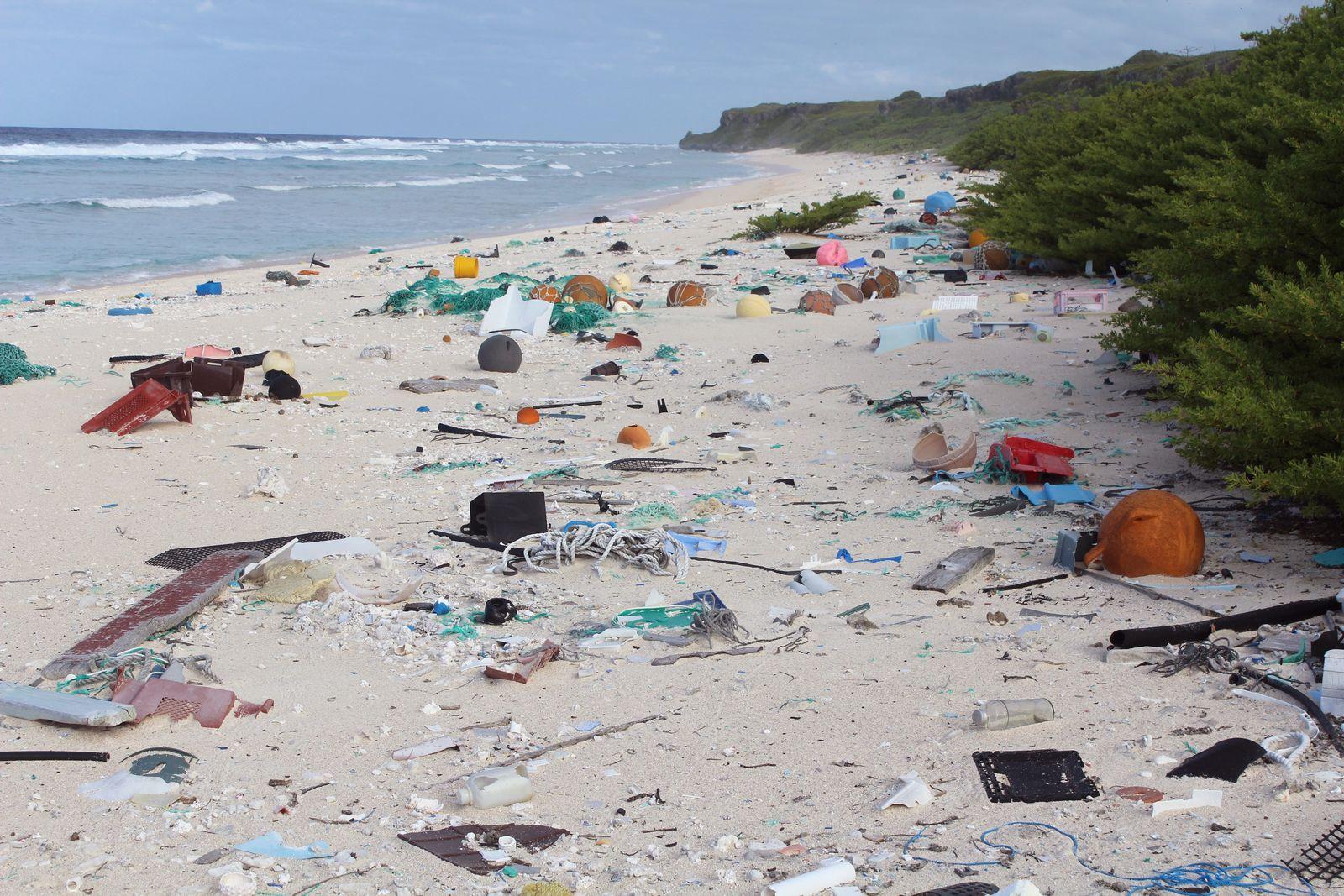 EINMALIGE VERWENDUNG Henderson Island/ Plastikmüll