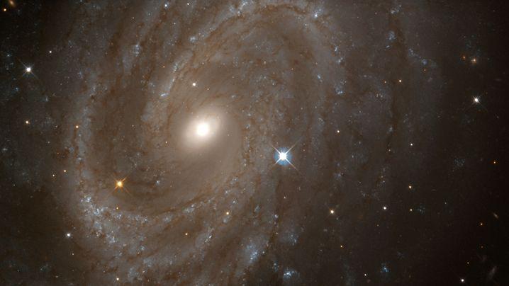 Teleskop Hubble: Die Top-Erkenntnisse des Spähers
