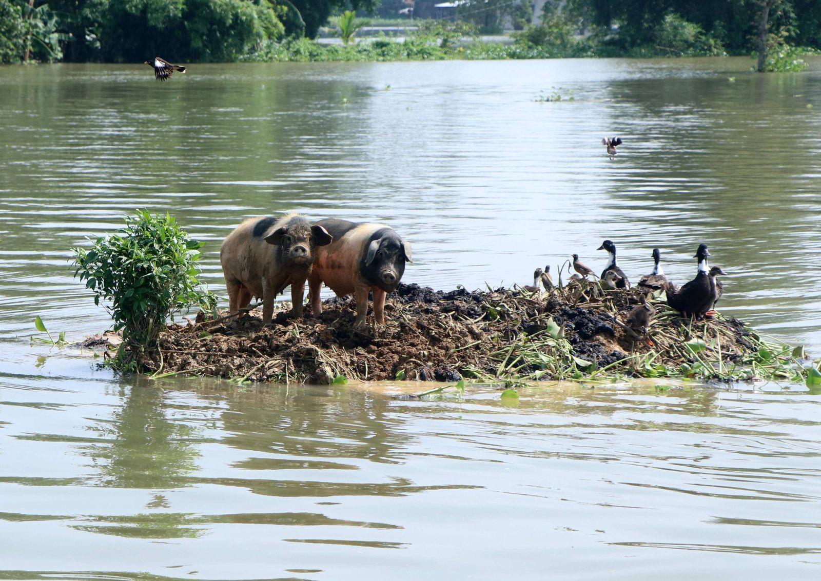 India floods July