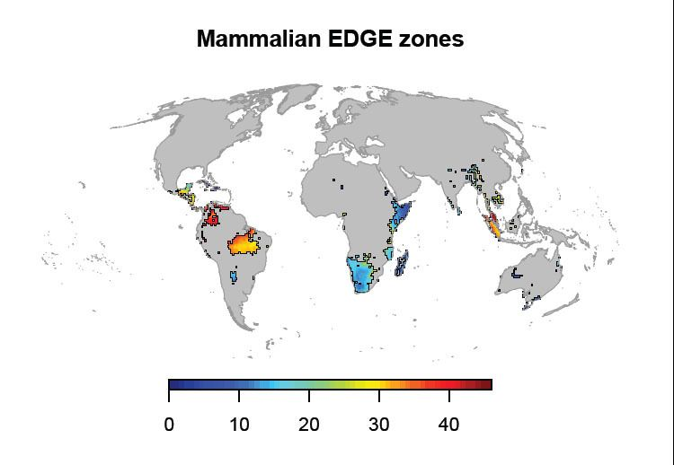 Weltkarte / Bedrohte Tierarten