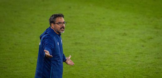 FC Schalke 04, FSV Mainz 05, Würzburger Kickers, 1. FC Kaiserslautern: Vier Doofe, ein Gedanke