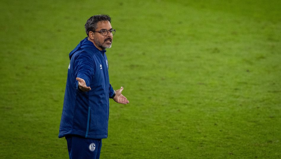 David Wagner (bei seinem letzten Spiel als Schalke-Trainer)