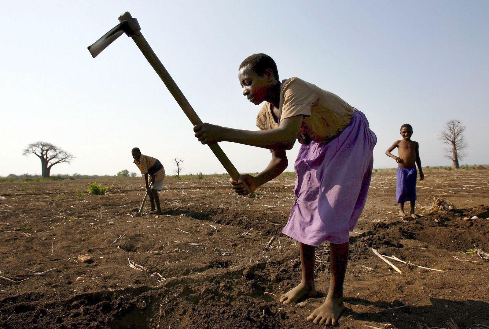 KaSP Etnwicklungshilfe / Kleinbauern in Afrika