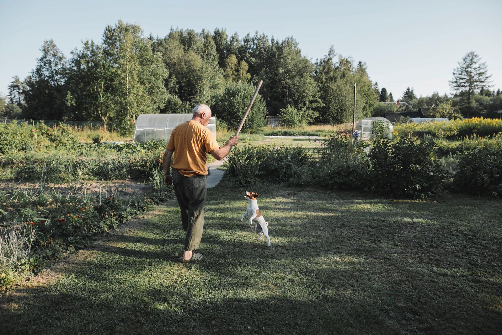 Senior man playing with dog in garden
