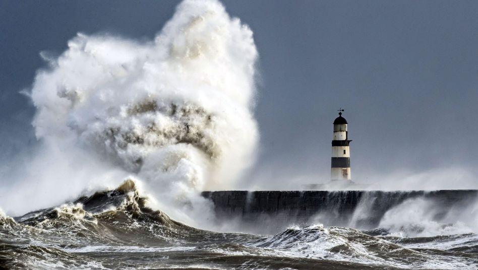 Wellen donnern gegen die Kaimauer von Seaham Harbour: Ein Harvard-Forscher hat nachgewiesen, wie wir Schall etwa als Meeresrauschen hören können