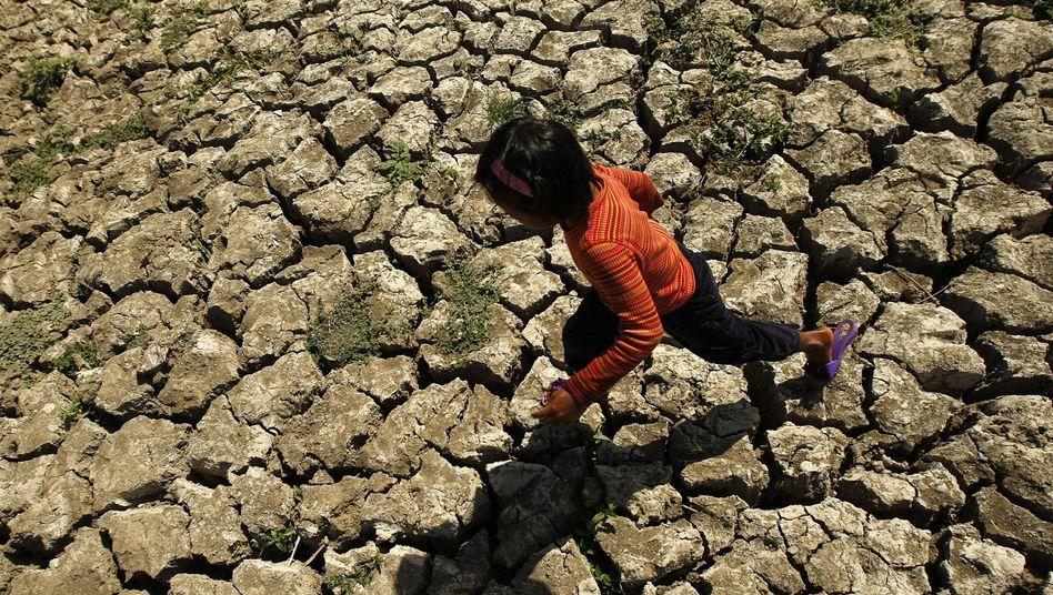 Dürren und Missernten: Die Folgen von El Niño