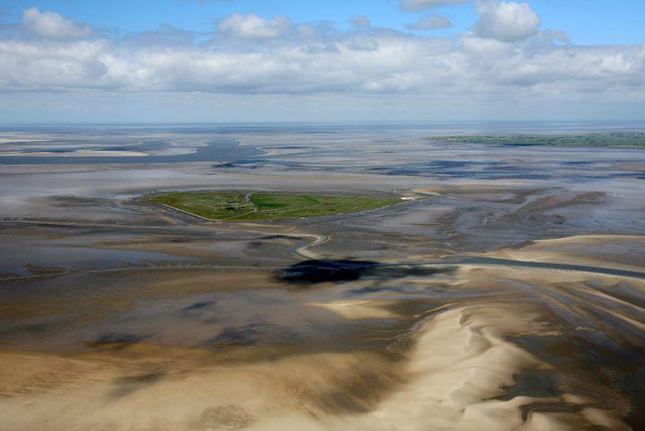 Blick bei Niedrigwasser auf die Hallig Süderoog