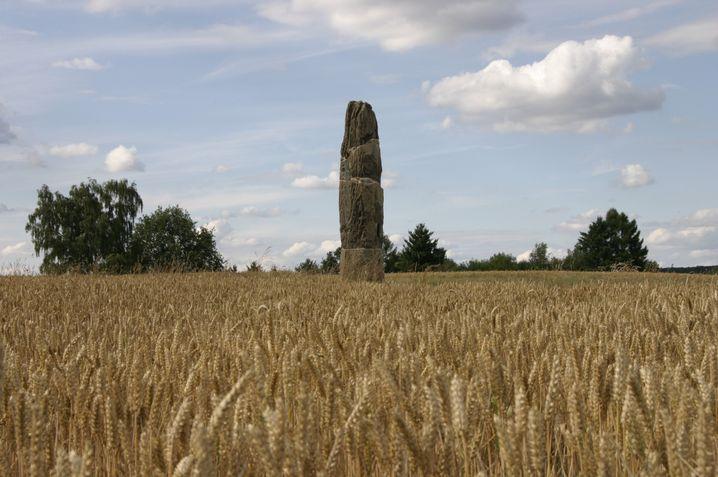 Gollenstein: Ein fast sieben Meter hoher Menhir