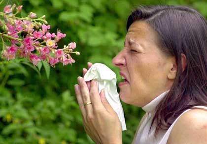 Junge Frau mit Heuschnupfen: Allergiezellen werden tatsächlich gebraucht