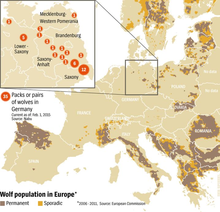 Graphic: Wolf Populations in Europe