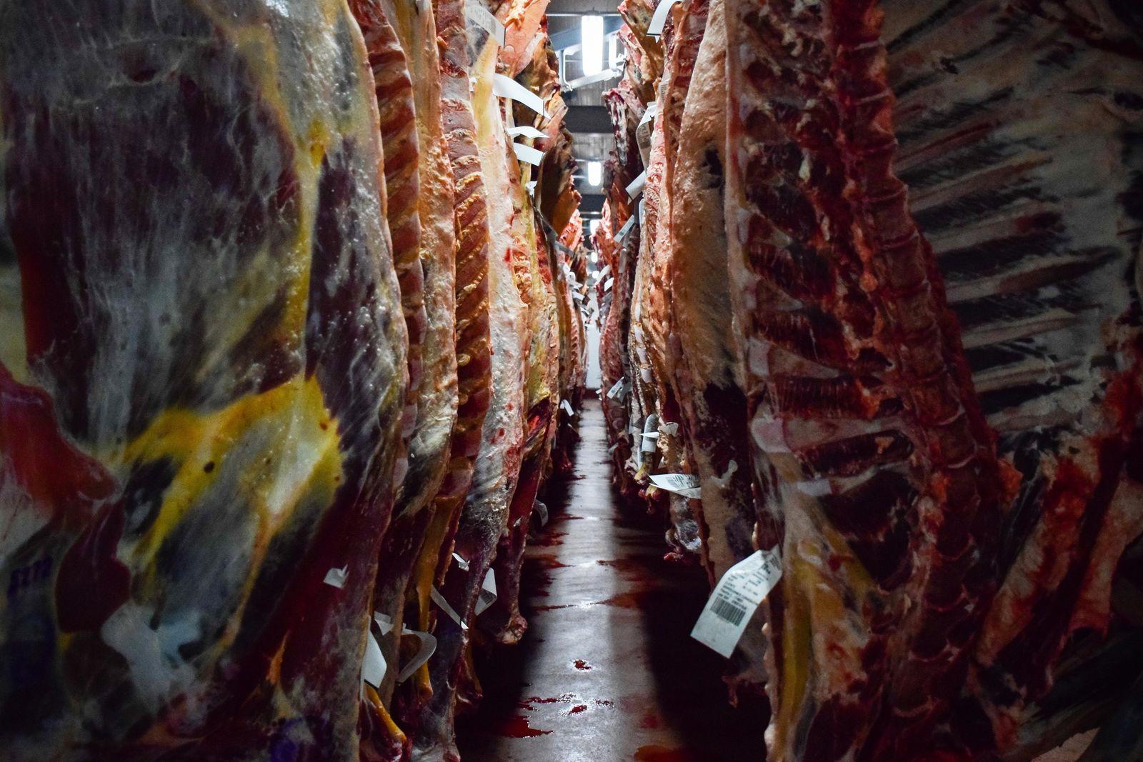 Fleischindustrie in Chile