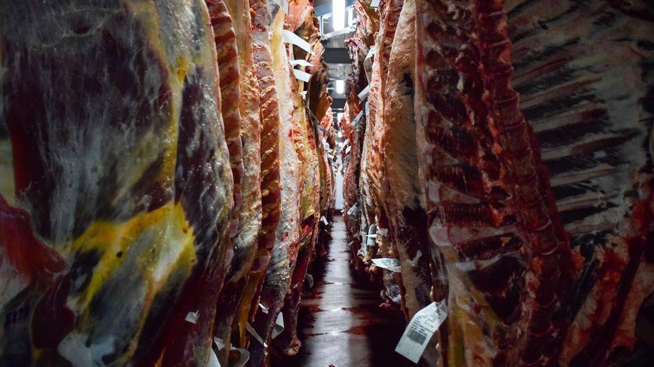 Kühllager: Rechtsverstöße bei großen Unternehmen ebenso wie bei Mittelständlern
