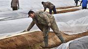 Berlin verbietet Saisonarbeitern die Einreise